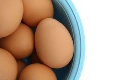 Huevos en el tazón de fuente azul claro aislado en blanco imagenes de archivo