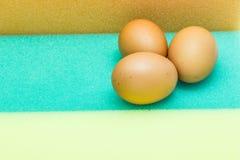 Huevos en esponja Fotos de archivo libres de regalías