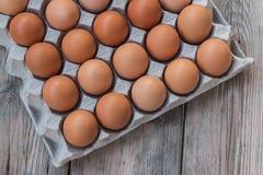 Huevos en la bandeja del papel Foto de archivo libre de regalías