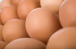 Huevos en la bandeja del papel, macro imagen de archivo