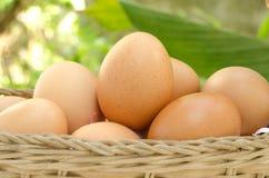 Huevos en la cesta. Foto de archivo libre de regalías