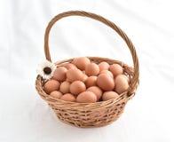 Huevos en la cesta llenada en el fondo blanco Imagen de archivo libre de regalías