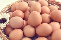 Huevos en la cesta llenada en el fondo blanco Foto de archivo
