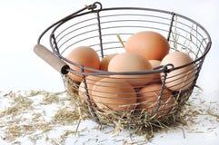 Huevos en la cesta y la paja Foto de archivo libre de regalías