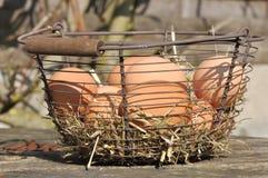 Huevos en la cesta y la paja Imagenes de archivo
