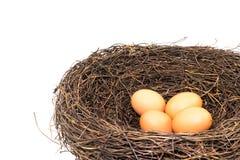 Huevos en la jerarquía artificial grande del pájaro Foto de archivo
