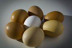 Huevos en la tabla bajo rayos del sol de la mañana El concepto de soledad, individualidad, una contra todos Foto de archivo libre de regalías