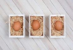 Huevos en los cajones de madera Fotos de archivo libres de regalías