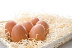 Huevos en paja Fotografía de archivo libre de regalías