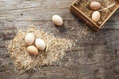 Huevos en paja Fotos de archivo libres de regalías