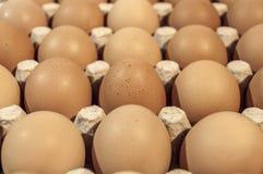 Huevos en paquete del cartón en una tabla de madera para cocer, ascendente cercano Foto de archivo libre de regalías