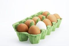 Huevos en rectángulo Fotografía de archivo libre de regalías