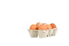 Huevos en rectángulo Fotos de archivo