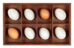 Huevos en rectángulo de madera Imágenes de archivo libres de regalías
