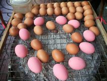 Huevos en rejilla que son asados a la parrilla Alimento tailandés de la calle Fotografía de archivo