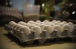 Huevos en un cartón Foto de archivo libre de regalías
