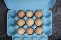 Huevos en un cartón Fotos de archivo libres de regalías