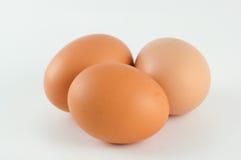 Huevos en un fondo blanco Foto de archivo
