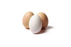 Huevos en un fondo blanco Foto de archivo libre de regalías