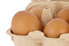 Huevos en un rectángulo Foto de archivo