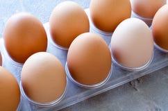Huevos en una bandeja Imágenes de archivo libres de regalías