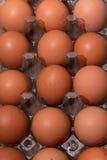 Huevos en una bandeja plástica Fotografía de archivo