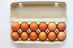 Huevos en una caja del cartón Foto de archivo libre de regalías