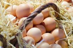 Huevos en una cesta Fotos de archivo