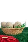 Huevos en una cesta contra un fondo neutral fotos de archivo libres de regalías