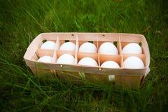 Huevos en una cesta de mimbre Fotografía de archivo libre de regalías