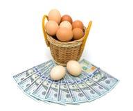 Huevos en una cesta y un dinero aislados en el fondo blanco Fotos de archivo libres de regalías