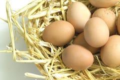 Huevos en una jerarquía Foto de archivo libre de regalías