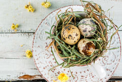 Huevos en una jerarquía en una taza de café vieja Fotos de archivo libres de regalías
