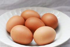 Huevos en una placa blanca, en luz del día Fotografía de archivo libre de regalías