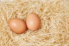 Huevos fijados en paja Imagenes de archivo