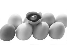 Huevos, foto blanco y negro Foto de archivo libre de regalías