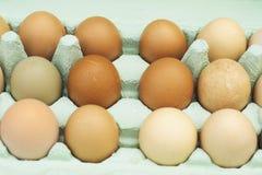 Huevos free-range frescos del pollo Fotos de archivo libres de regalías