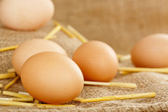 Huevos frescos Imagenes de archivo