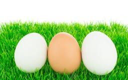 Huevos frescos blancos y marrones Foto de archivo libre de regalías