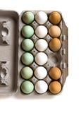 Huevos frescos de la granja Fotografía de archivo libre de regalías