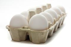 Huevos frescos en rectángulo Fotos de archivo libres de regalías
