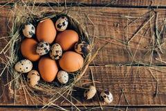 Huevos frescos y orgánicos Fotografía de archivo