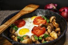 Huevos fritos con las setas, los tomates y las hierbas Imágenes de archivo libres de regalías