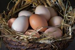 Huevos hechos en casa en una cesta Imágenes de archivo libres de regalías
