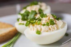 Huevos hervidos con mayonesa y la cebolleta cortada Imágenes de archivo libres de regalías