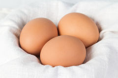 Huevos hervidos del pollo Imagen de archivo