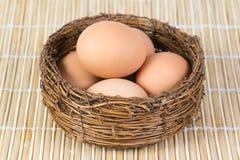 Huevos hervidos del pollo Imagen de archivo libre de regalías