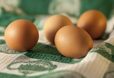 Huevos libres de la gama Fotografía de archivo libre de regalías