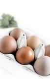 Huevos libres del rango Fotografía de archivo