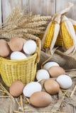 Huevos libres frescos de la gama Fotografía de archivo libre de regalías